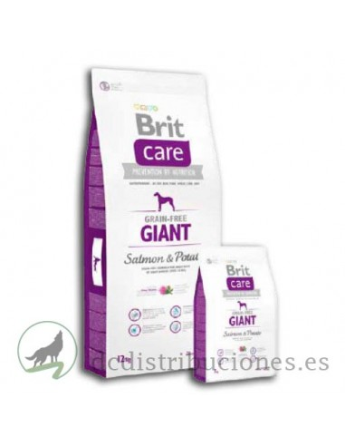 Brit Care Adulto Giant Salmón y Patata