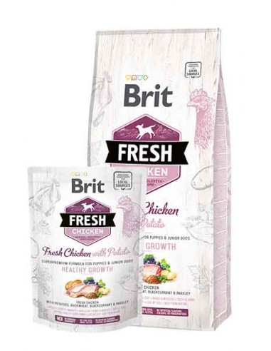 Brit Fresh Pollo con patata PUPPY Medium